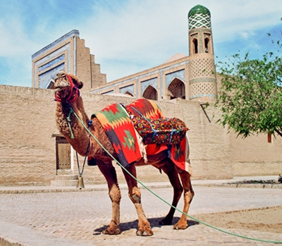 Somewhere along the Silk Road...